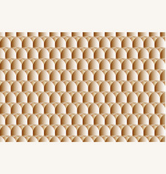 egg abstract pattern vector image