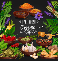Herbs and spices poster for fresh seasonings shop vector