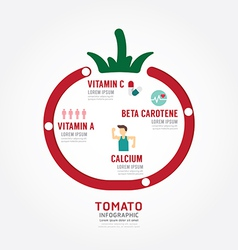 Infographic tomato health concept vector image