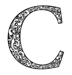 letter c letter black with white ornament vector image