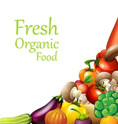 Papaer design with fresh vegetables vector image