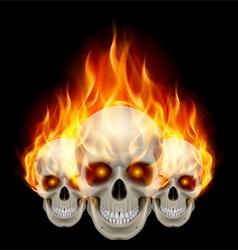 Three flaming skulls vector
