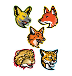 Wild dogs and wild cats mascot collection vector