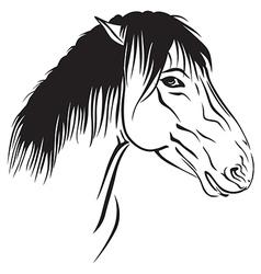 horse head profile vector image vector image