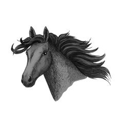 Black horse head sketch equine races symbol vector