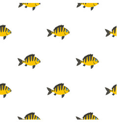 perch fish pattern seamless vector image vector image