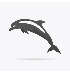 Monochrome Dolphin Isolated on White Background vector image vector image