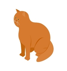 Big orange cat icon isometric 3d style vector image
