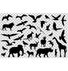 set of animals silhouettes isolated vector image