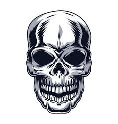 Skull head drawn vector