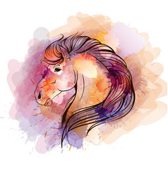 Watercolor horse head vector