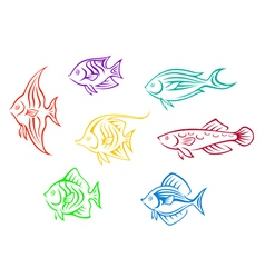 Set of seven colorful aquarium fishes vector image