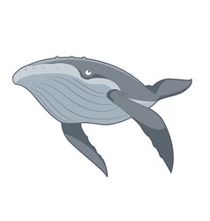cartoon swimming whale vector image vector image