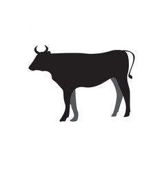 Cow silhouette icon design template isolated vector