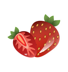Red berry strawberry and a half of strawberry vector
