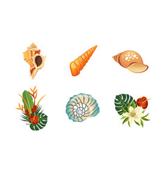 Sea shells palm leaves and flowers set summer vector