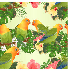 seamless texture parrots agapornis vector image