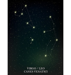 Virgo Leo and Canes Venatici constellation vector