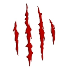 Claws scratch mark vector image vector image