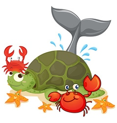 Different type of sea animals vector image