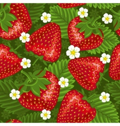 excellent seamless pattern with strawberry vector image vector image
