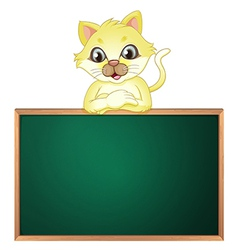 A yellow cat above the empty blackboard vector image vector image