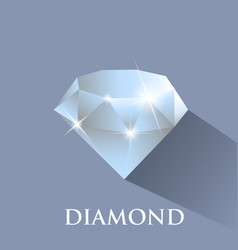 diamond design with long shadow vector image