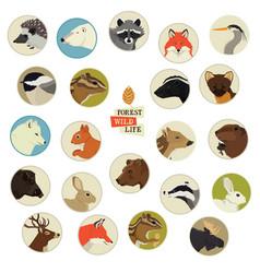 Forest wildlife animals round frames vector