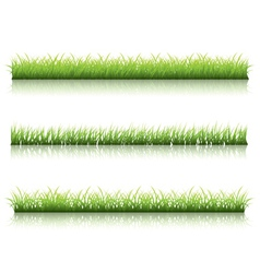 Green grass line vector