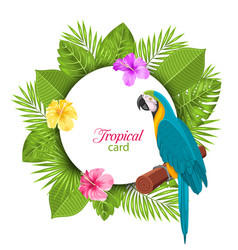 Tropical card with parrot ara colorful hibiscus vector