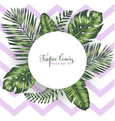 Geometric background with tropical leaves vector