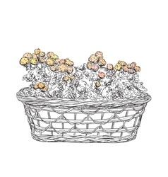 Hand drawn basket sketch with flowers vector image