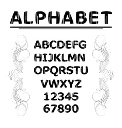 Alphabet with lines vector image