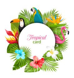 summer card with tropical plants hibiscus vector image vector image