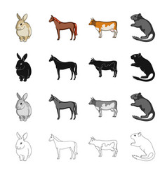 Animal horse mane and other web icon in cartoon vector