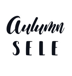autumn sale hand lettering phrase vector image