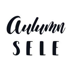 autumn sale hand lettering phrase vector image
