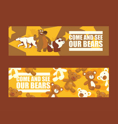 bear cartoon animal character brown grizzly vector image