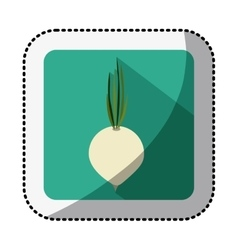 Color square with middle shadow sticker with onion vector