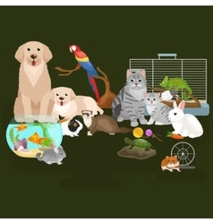 Home pets set cat dog parrot goldfish hamster vector image