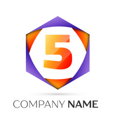 Number five logo symbol in the colorful hexagonal vector