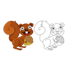 animal outline for squirrel vector image vector image