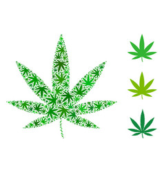 cannabis mosaic of hemp leaves vector image