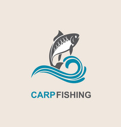 carp fish icon vector image