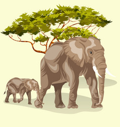 cartoon family of african elephants walking in vector image