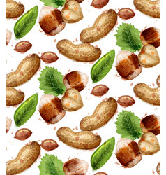 hazelnuts pattern watercolor painted style vector image