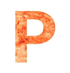 P land letter vector