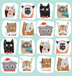 Seamless cartoon christmas cats vector