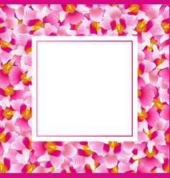 Pink vanda miss joaquim orchid banner card vector