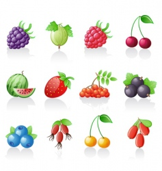 berries icon set vector image vector image